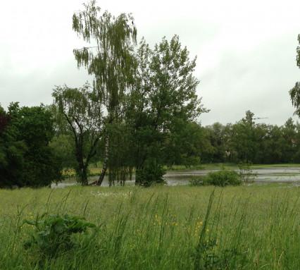 Hochwasser 2013-4